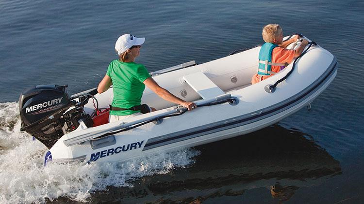 Mercury F20 MH/MLH EFI